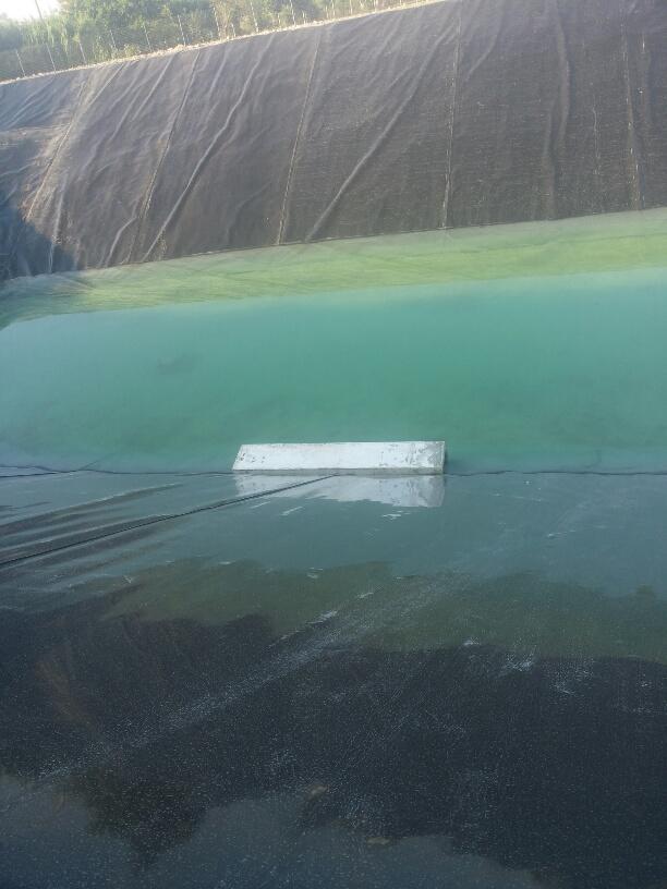Raccolta acque meteoriche, piovane